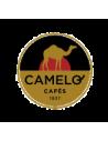 Café Camelo